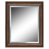 allen + roth 27-in x 33-in Bronze Rectangular Framed Mirror