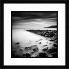 16-in W x 16-in H Photography Framed Wall Art