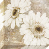 12-in W x 12-in H Floral Canvas