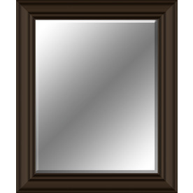 Shop oil rubbed bronze rectangle framed wall mirror at for Bronze framed bathroom mirror