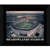 22-in W x 18-in H Meadowlands Stadium Framed Wall Art