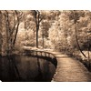 30-in W x 38-in H Photography Canvas Wall Art