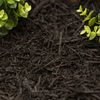 Premium 2-cu ft Black Hardwood Mulch
