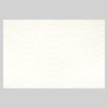 American Olean Flattering Patterns White Glazed Ceramic Indoor/Outdoor Wall Tile (Common: 12-in x 18-in; Actual: 12.01-in x 18-in)