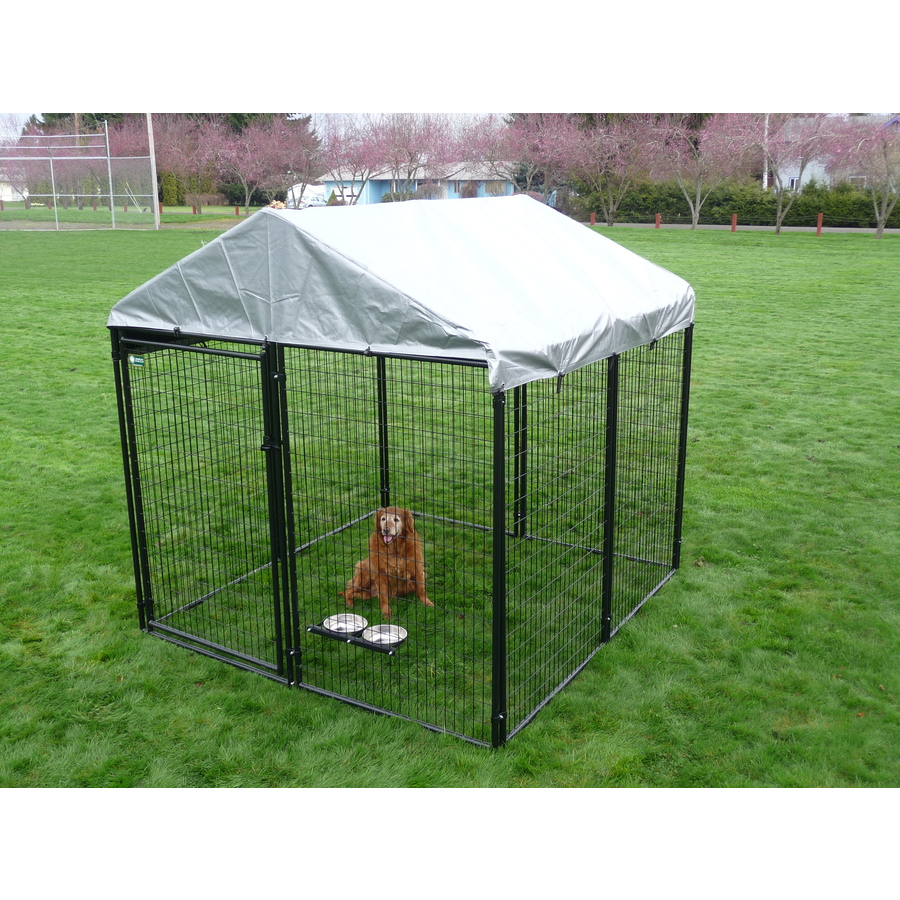 Shop 10 ft x 10 ft x 6 ft outdoor dog kennel preassembled for Dog kennel clearance
