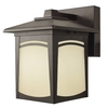 Good Earth Lighting 8-5/8-in Dark Bronze Outdoor Wall Light