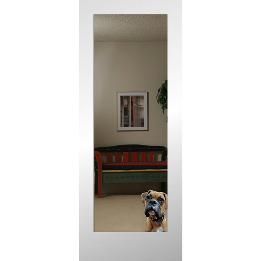 shop reliabilt 1 lite solid core non bored mirrored glass interior slab door common 24 in x 80