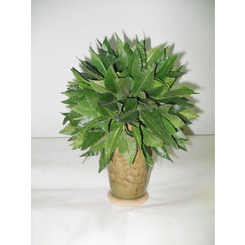 7-in Green Artificial Plant