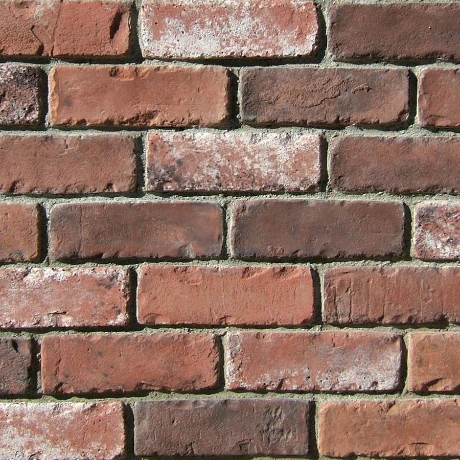 Shop Coronado 12 Sq Ft Rustic Blend Special Used Brick