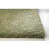 Sofia Green Rectangular Indoor Shag Throw Rug (Common: 2 x 4; Actual: 27-in W x 45-in L)