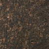 Emser 10-Pack Tan Brown Granite Floor and Wall Tile (Common: 12-in x 12-in; Actual: 12-in x 12-in)