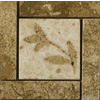 Emser 4-in x 4-in Segovia Natural Marble Floor Tile