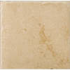 Emser Genoa 11-Pack Albergo Porcelain Floor Tile (Common: 13-in x 13-in; Actual: 12.99-in x 12.99-in)