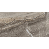 Emser Eurasia 6-Pack Grigio Porcelain Floor Tile (Common: 12-in x 24-in; Actual: 11.79-in x 23.79-in)