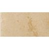 Emser 8-Pack Genoa Albergo Glazed Porcelain Indoor/Outdoor Floor Tile (Common: 12-in x 24-in; Actual: 11.73-in x 23.5-in)