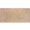 Emser Rio Grande 8-Pack Creek Porcelain Floor Tile (Common: 12-in x 24-in; Actual: 11.8-in x 23.7-in)