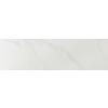 Emser Paladino Albanella Porcelain Bullnose Tile (Common: 3-in x 12-in; Actual: 2.87-in x 11.77-in)