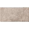 Emser 8-in x 16-in Philadelphia Natural Travertine Floor Tile