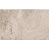 Emser 16.02-in x 24.02-in Philadelphia Natural Travertine Floor Tile