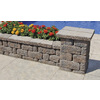 Sand/Tan Country Manor Concrete Retaining Wall Block (Common: 16-in x 6-in; Actual: 16-in x 6-in)