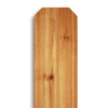 Western Red Cedar Dog-Ear Wood Fence Picket (Common: 5/8-in x 5-1/2-in x 72-in; Actual: 0.575-in x 5.5-in x 72-in)