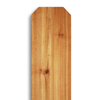 Severe Weather Wood Western Red Cedar Fence Picket (Common: 5/8-in x 6-in x; Actual: 0.59-in x 5.5-in)