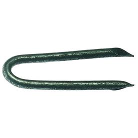 Grip-Rite 50-lb 1.5-in Standard Staples