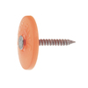 Grip-Rite 1-lb 2-in Round Plastic Cap Nails