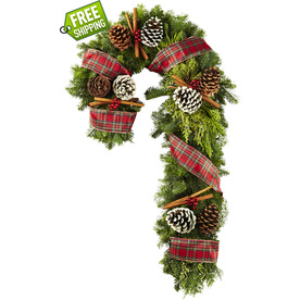 allen + roth 36-in Fresh-Cut Noble Fir Wreath