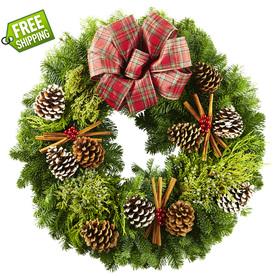 allen + roth 24-in Fresh-Cut Noble Fir Wreath