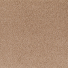 STAINMASTER Aristocrat Paly Clay Textured Indoor Carpet