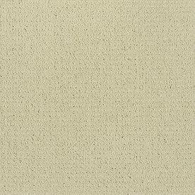 Shaw Cream/Beige/Almond Fashion Forward Indoor Carpet