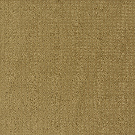 Shaw Yellow/Gold Fashion Forward Indoor Carpet