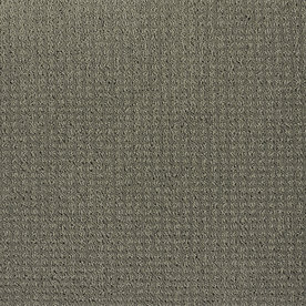 Shaw Gray/Silver Fashion Forward Indoor Carpet