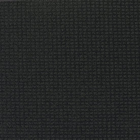 Shaw Black Fashion Forward Indoor Carpet