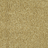 Stock Carpet Dusty Trail Textured Indoor Carpet