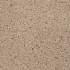 STAINMASTER Active Family Tranquility Antique Linen Frieze Indoor Carpet