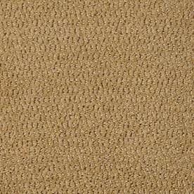 Is Stainmaster Carpet Good Images