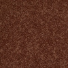 Softbound I Arizona Canyon Textured Indoor Carpet