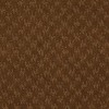 Specialize Toffee Crunch Fashion Forward Indoor Carpet