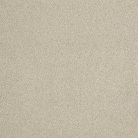 STAINMASTER Trusoft Cotton Island Sandstone Textured Indoor Carpet
