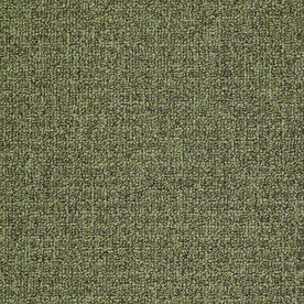 Shaw Home and Office Fernwood Berber Outdoor Carpet