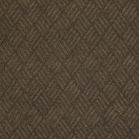 Shaw Home and Office Boardwalk Berber Outdoor Carpet