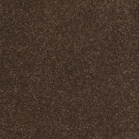STAINMASTER Trusoft Luscious III Dark Chocolate Textured Indoor Carpet