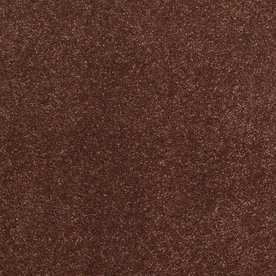 STAINMASTER Trusoft Luscious III Pomegranate Textured Indoor Carpet
