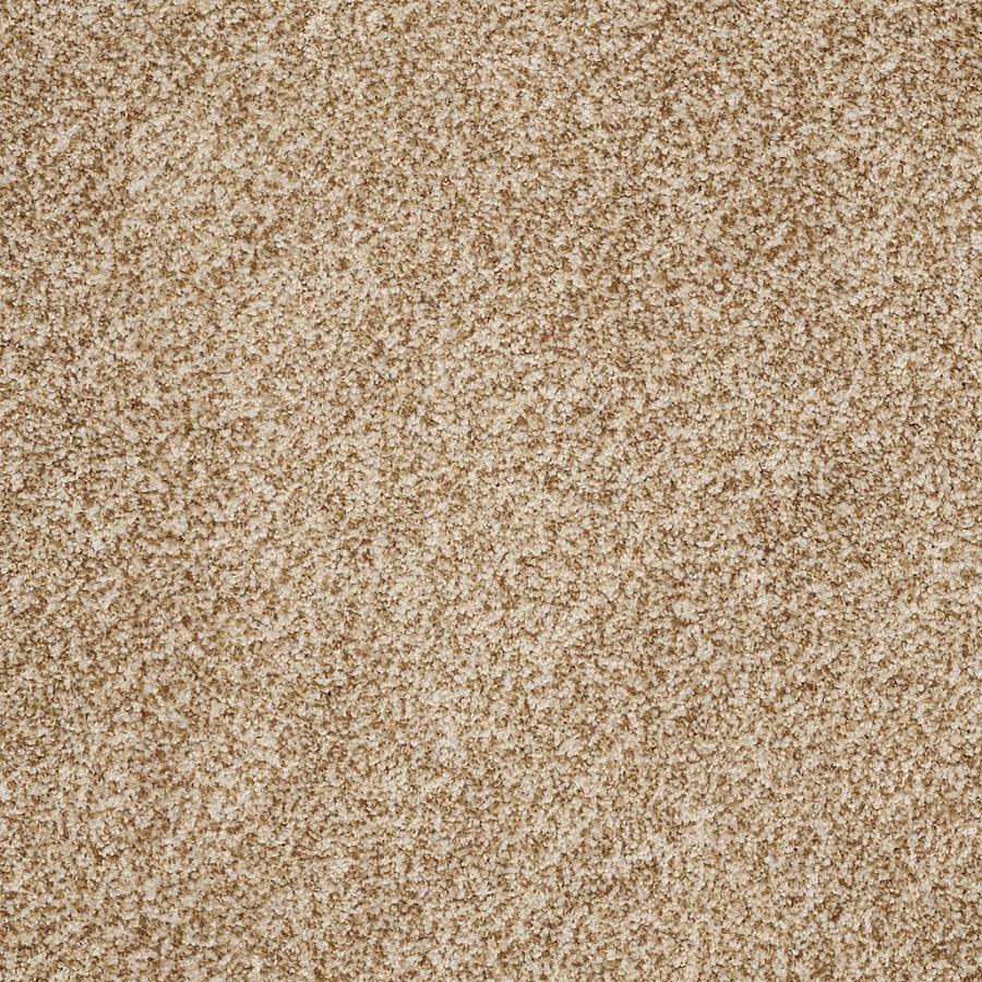 Stainmaster Carpet Lookup Beforebuying
