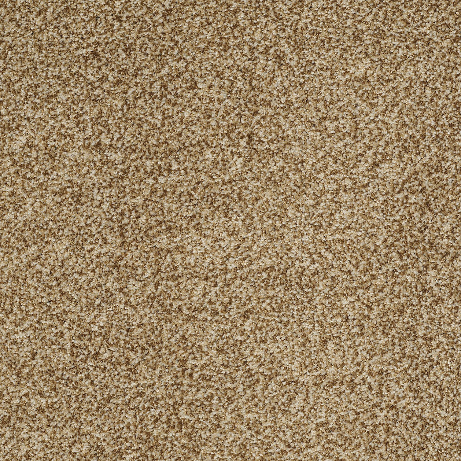 Shop Stainmaster Trusoft Peaceful Mood I Frontier Textured
