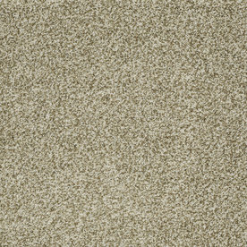 Carpet Lowes Turf Httpwwwpic2flycomLowe27sTurfCarpet