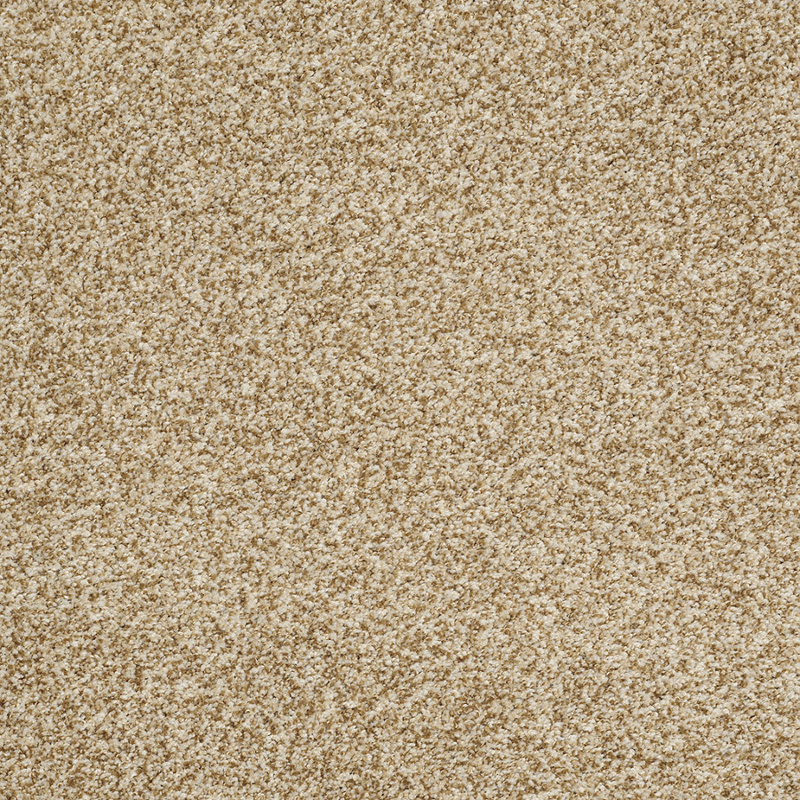 Shop STAINMASTER Trusoft Peaceful Mood Ii Store Style Tan Wash Textured Indoor Carpet at Lowes.com