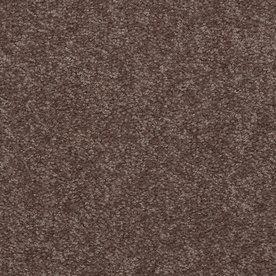 Shaw Stock Carpet Winter Wheat Textured Indoor Carpet